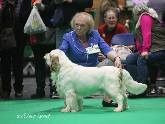 Linda Thorogood and Bosun at Crufts